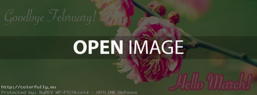 Goodbye February! Hello March – Facebook cover