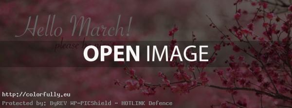 Hello March! Please Be Nice   Facebook Cover