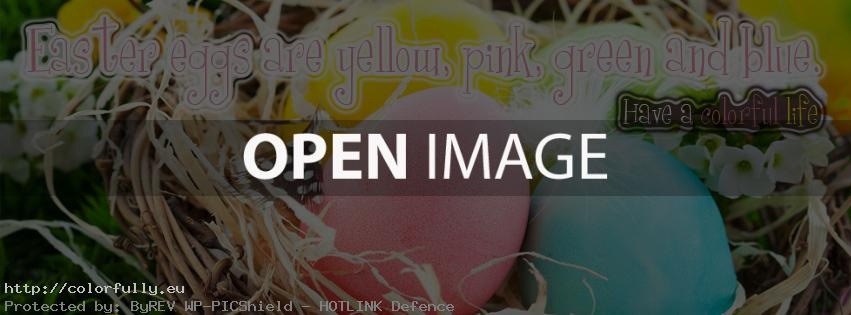 Easter eggs are yellow, pink, green and blue - Facebook cover