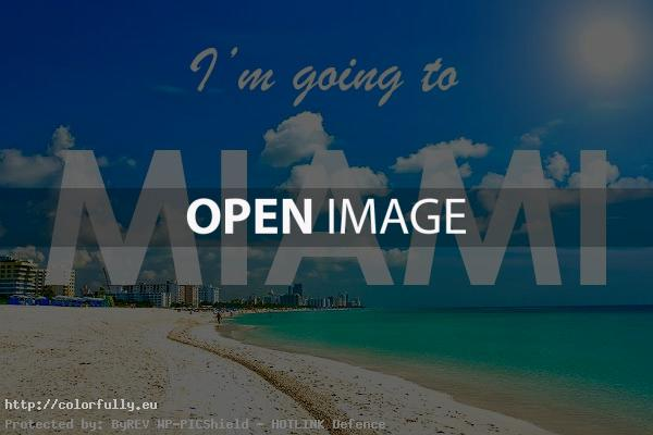 I\'m going to Miami – Colorfully
