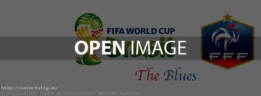 The Blues - France in Brasil