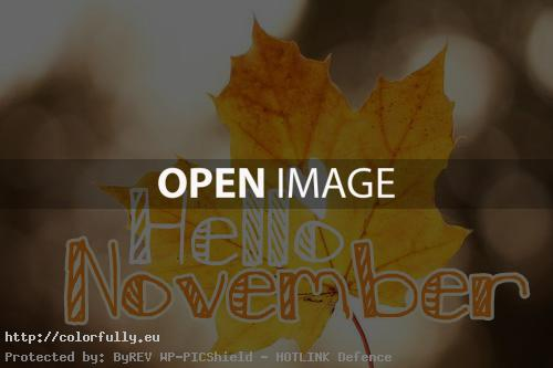 Image result for hello November free icones