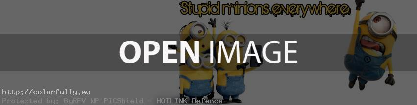 Stupid minions everywhere – Facebook cover