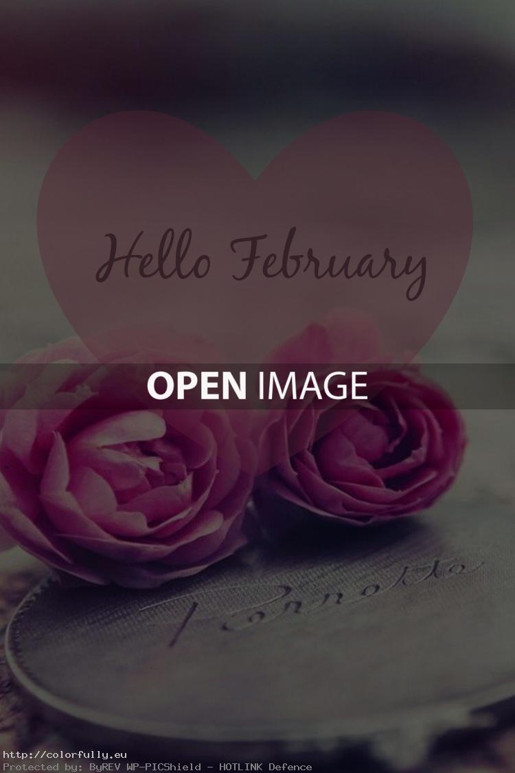 Colorfully Free Facebook Covers Hello February